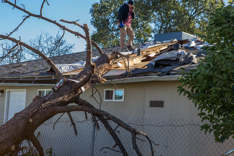 5671 Wallace Ave - Tree 1030am 12 16 2017 Extremly Windy Conditions-89.jpg