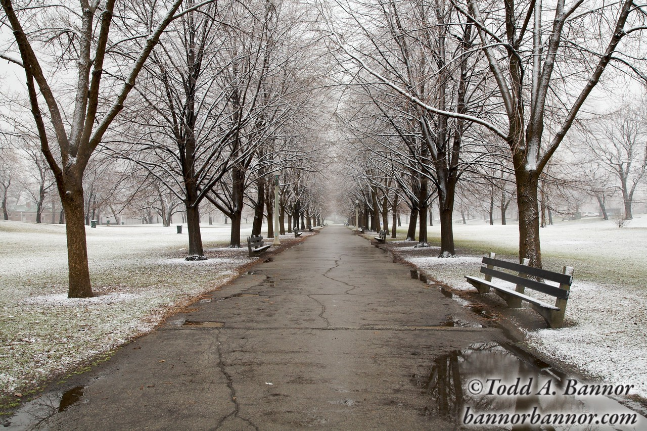 A walkway in Lincoln Park Chicago in winter