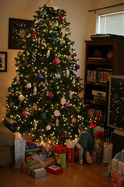 Aaron under his tree