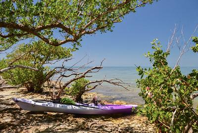 Kayaking to Indian Key, Islamorada, FL - June 2019