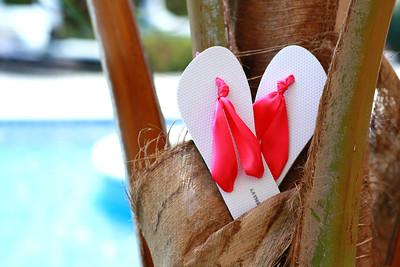 Nicole & Mike-A Punta Cana Destination Wedding