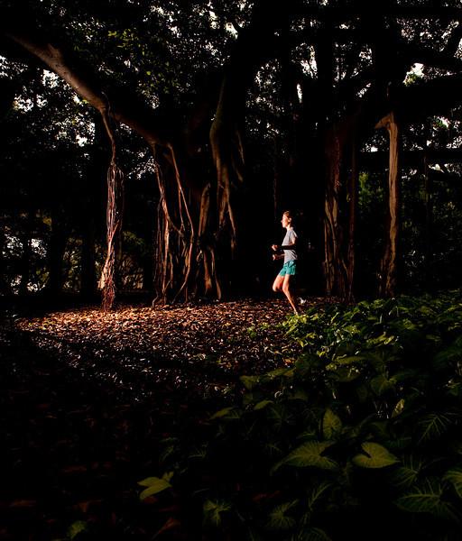 Running at Brisbane Botanical Gardens