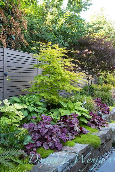 The Chartreuse Garden_1010.jpg