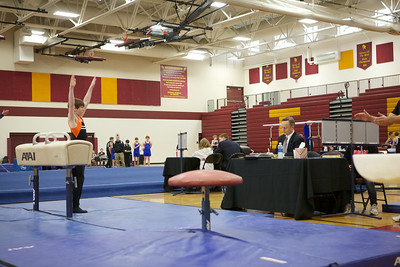 2013 Boys Gymnastics State Meet