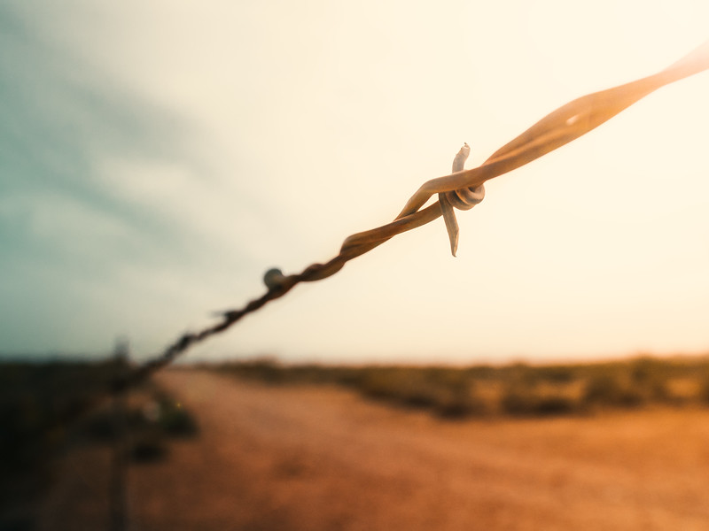 Barbed Wire No.1