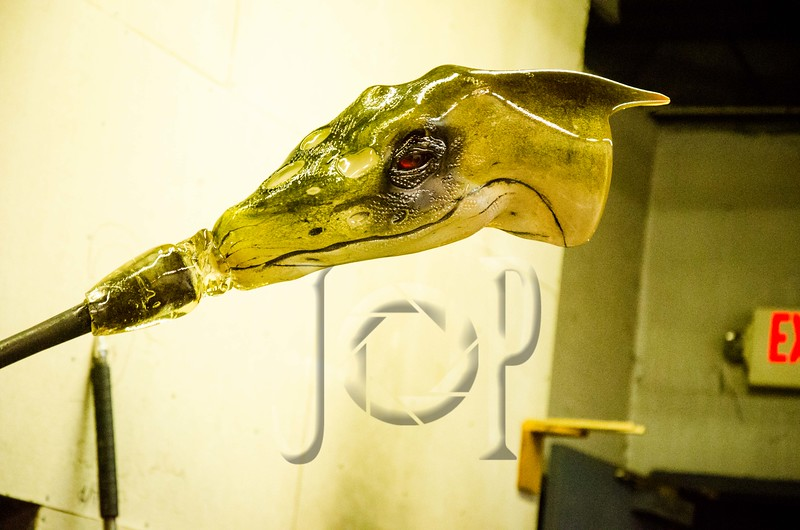 Raptor_Glass_wm-9562.jpg
