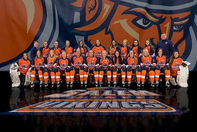 2018-2019 Salem State Vikings
