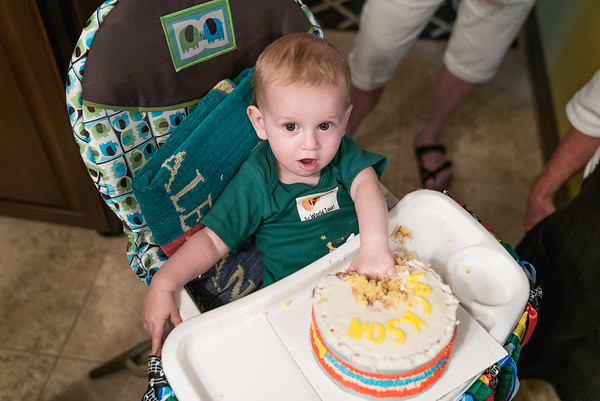 Jackson's 1st Birthday!