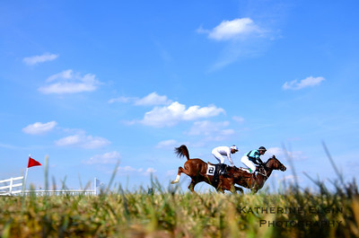 Steeplechase Races