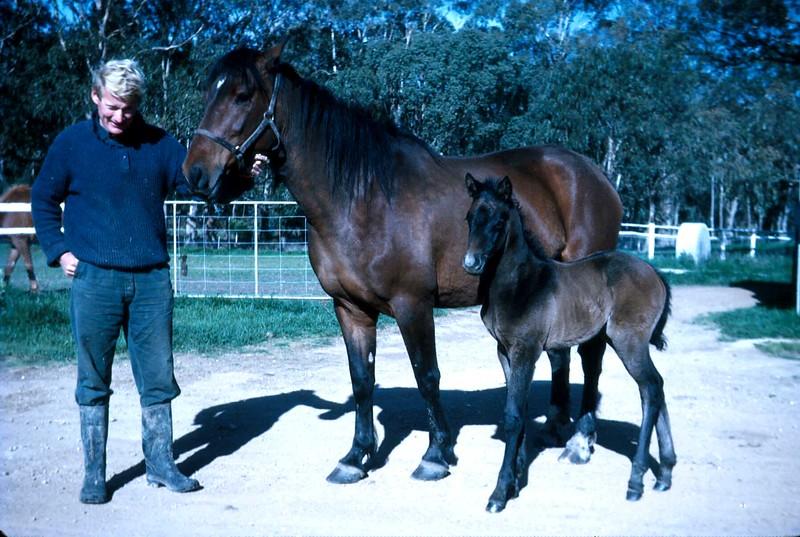 1972-10 (12) Graham with Rachel & filly.jpg
