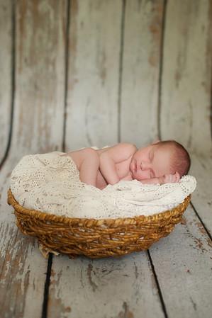 Adeline Newborns