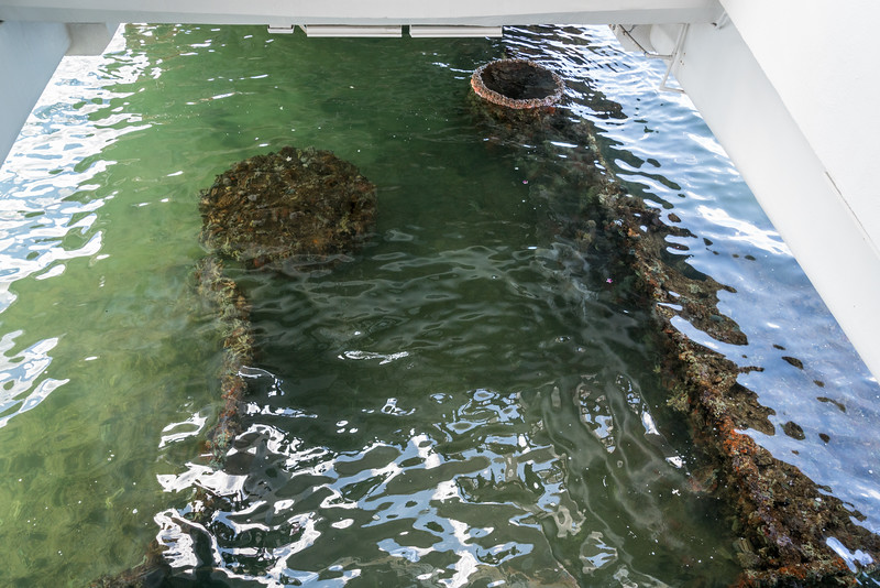 170528_USS_Arizona_Memorial_089.jpg