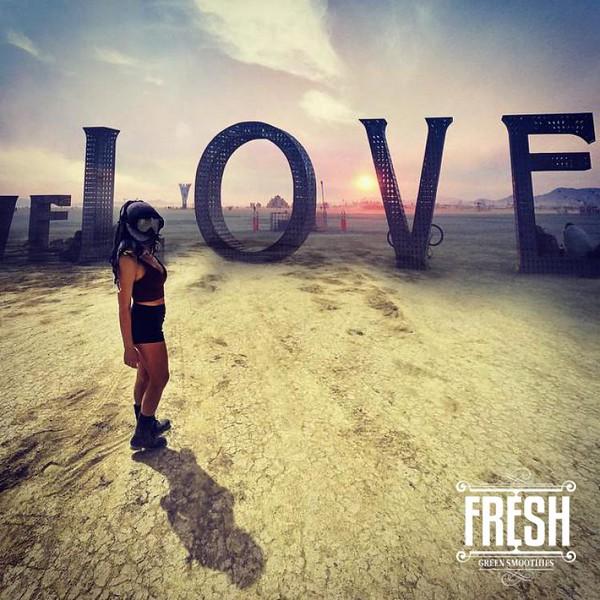 conscious-FreshGreenSmoothies_com-Vegan-Intelligent-Compassionate-raworganicvegan-plantbased-greensmoothies5202.jpg