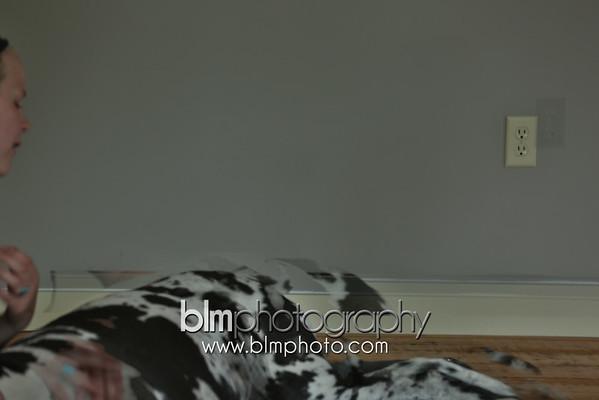 BAD Dog Beds_Unedited