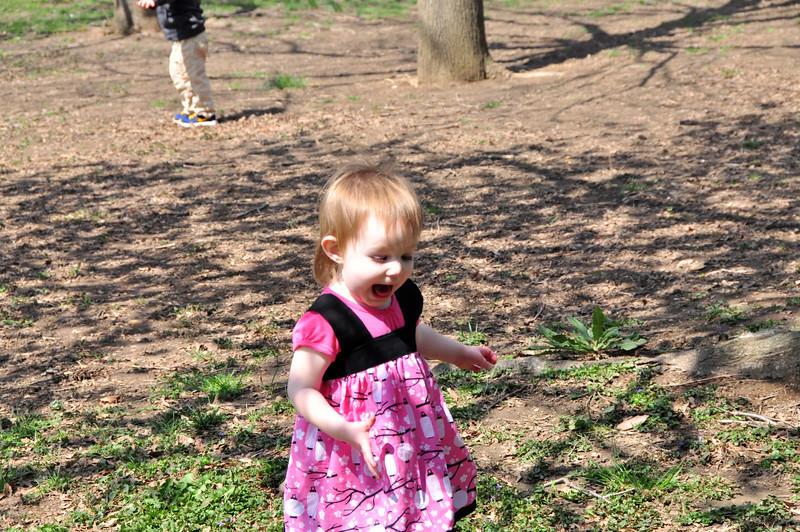 Cherry Blossoms 2014 053.jpg