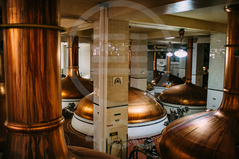 coors_brewery_tour-7458.jpg