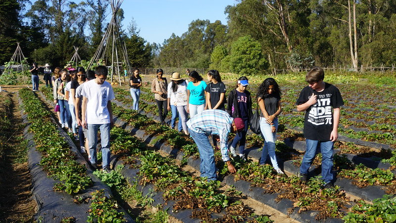 MAP Farmworker REality Tour-5.jpg