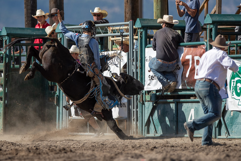 2019 Rodeo 3 (202 of 1306).jpg