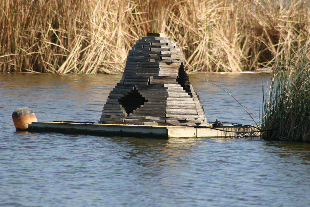 . The structure, built by Dow Wetlands Preserve volunteers, serves as a nesting place and a favorite hangout for turtles. (Joan Morris/Mercury News)