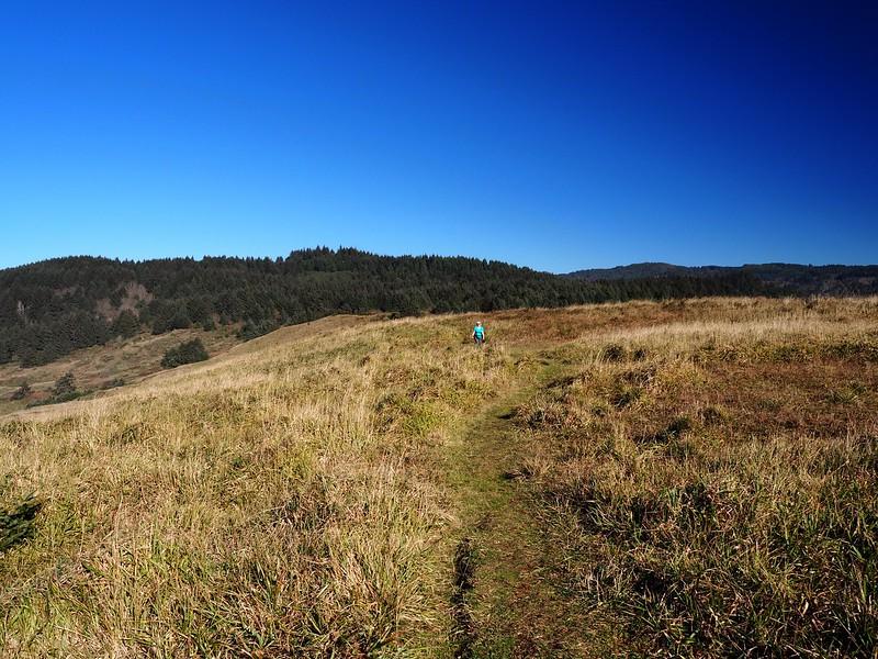 Cape Ferrelo Samuel H. Boardman State Scenic Corridor Oregon
