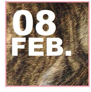 08 FEBRUARY