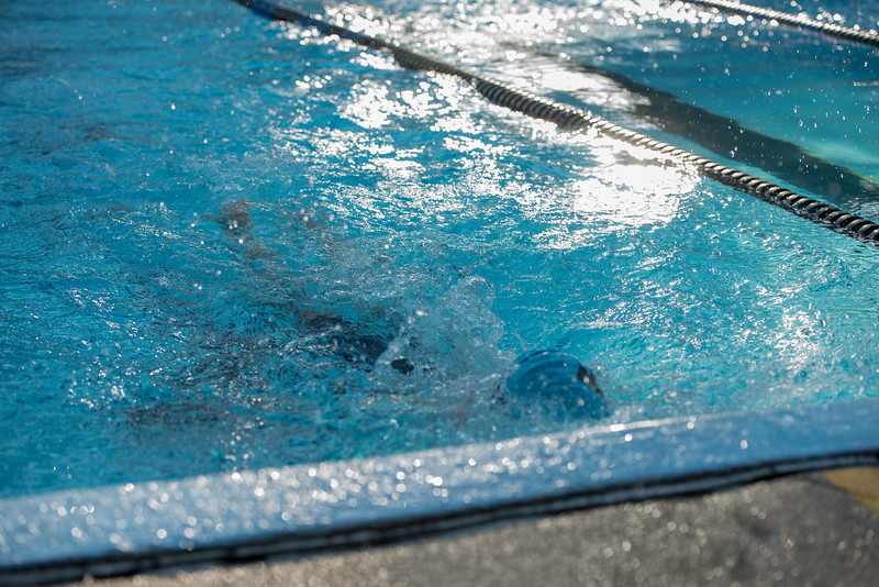 lcs_swimming_kevkramerphoto-131.jpg
