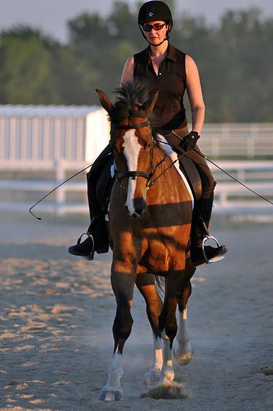 Horses July 2011 844a.jpg