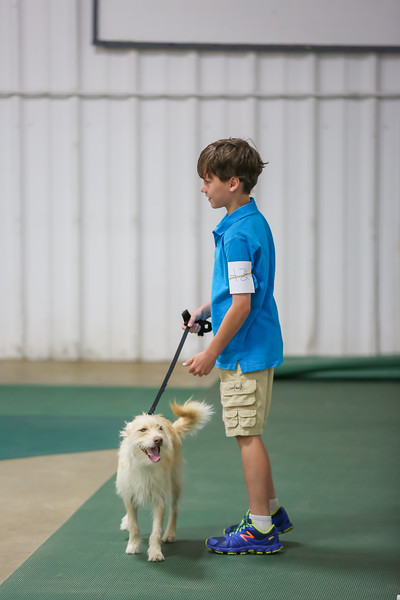 Dog Show-13.jpg