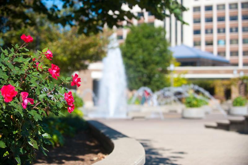 10_05_09_campus_scenes-96-5.jpg