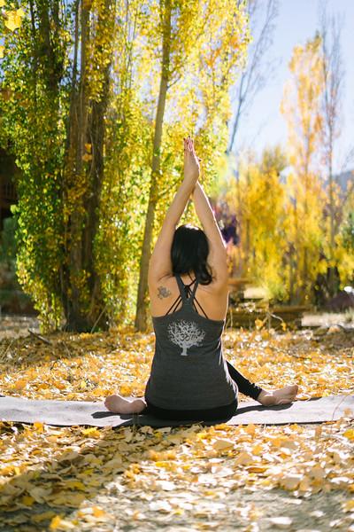 Toni Kuhn Yoga Photography Pine Mountain Club-33.jpg