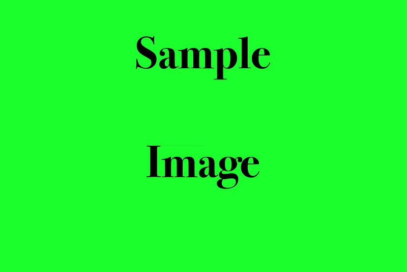 Sample Image copy.jpg