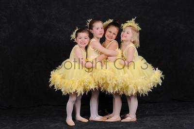 Group Photos & Siblings