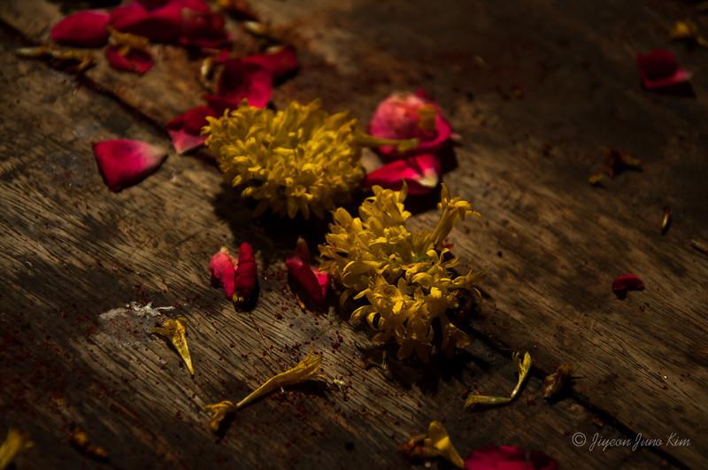 India-Varanasi-6633.jpg