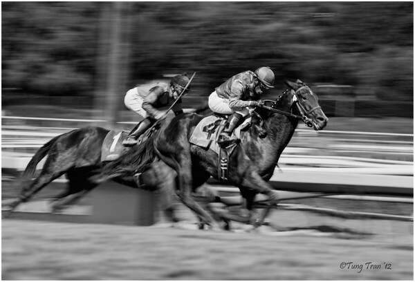 Santa Anita Photographer's Day (9/28/12)