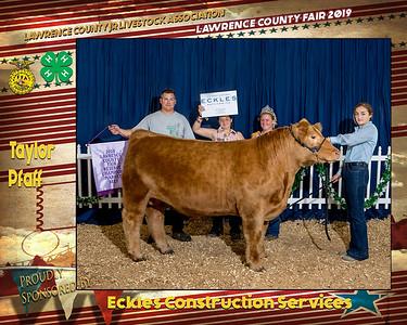 LC Fair 19 Livestock