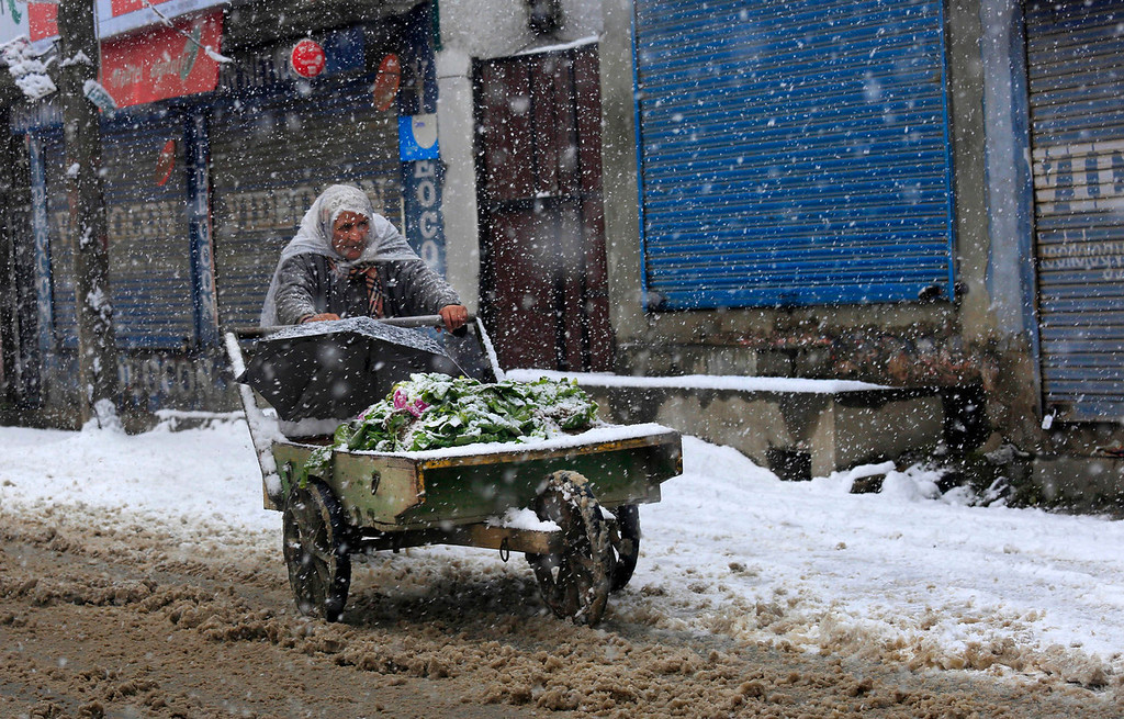 . A Kashmiri vegetable vendor pushes a handcart during a snowfall on the outskirts of Srinagar, India, Tuesday, Dec. 31, 2013. Snowfall in the Indian portion of Kashmir has disrupted power supply,air traffic and road traffic between Srinagar and Jammu, the summer and winter capitals of India\'s Jammu-Kashmir state, according to news reports. (AP Photo/Dar Yasin)