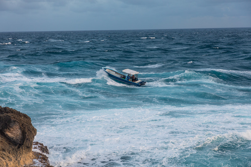 Intrepid local commercial fishermen.