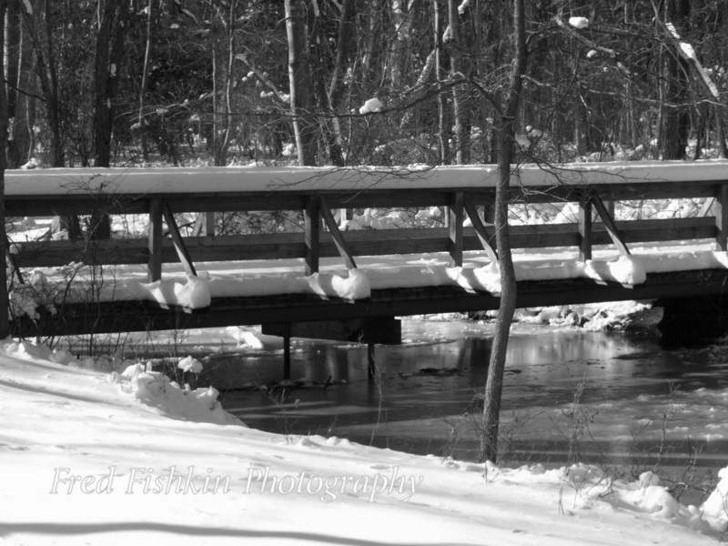 bridge snow bw.jpg