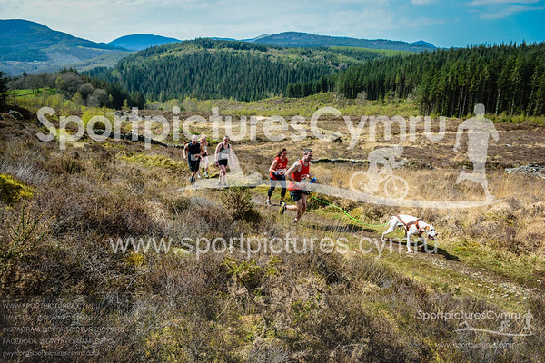 Goldrush Canicross Scenic Pictures