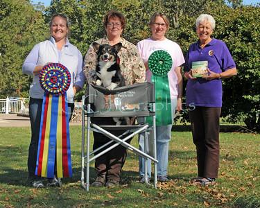 Herding Win Shots - Saturday