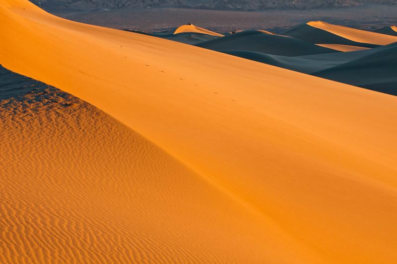 SandDunes-7.jpg