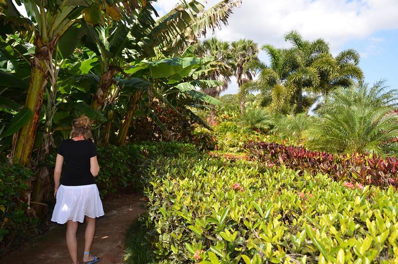 Oahu Hawaii 2011 - 92.jpg