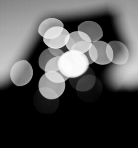 20120512-IMG_2518