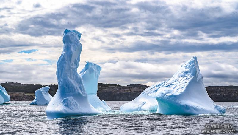 Cluster of Ice    Photography of Wayne Heim