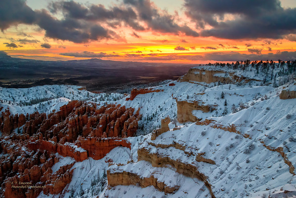 Utah's Bryce and Zion National Parks