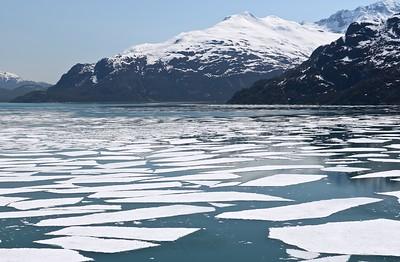 Alaska, day 6 Glacier Bay