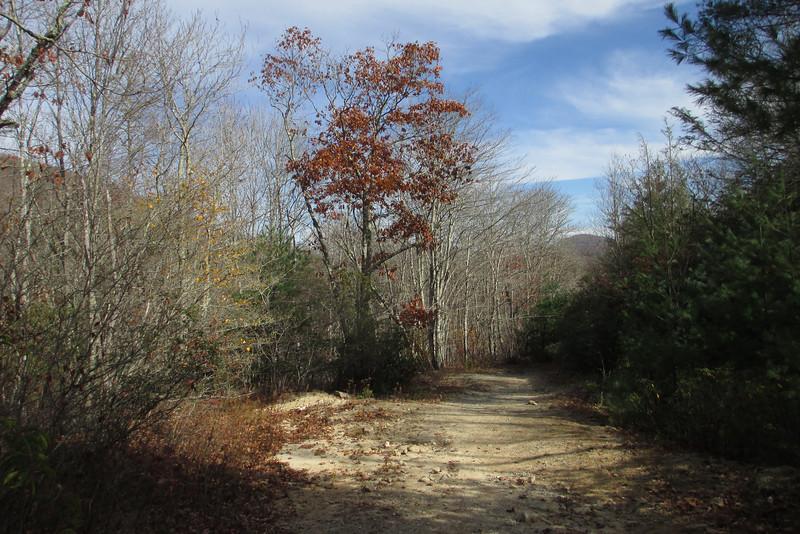 Panthertown Valley Trail - 3,900'