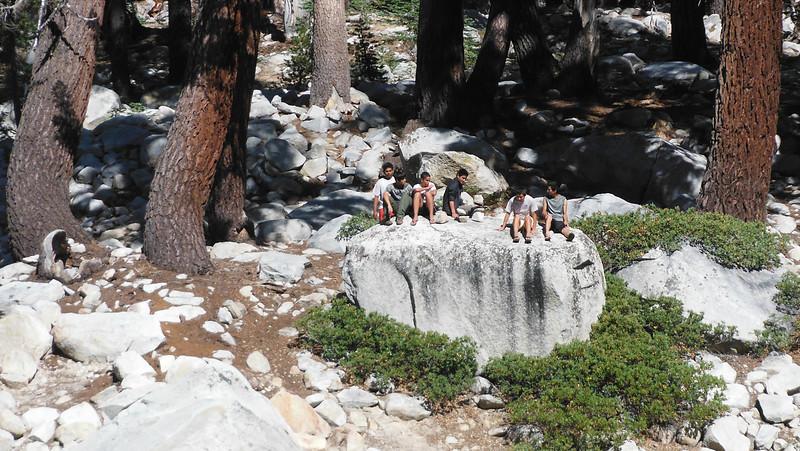 sequoia 091.JPG