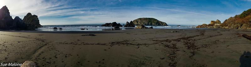 12-18-2020 Summy Friday at the Beach-2.jpg
