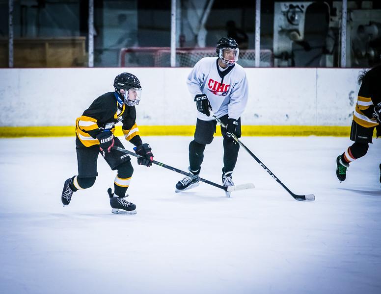 Bruins2-713.jpg